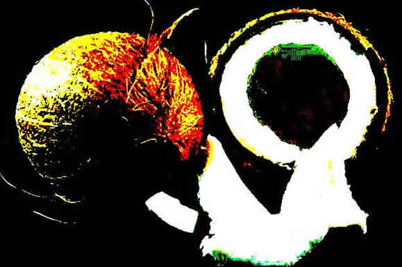 Lisa Jarnot, Keith Waldrop, Brigitte Byrd, Natasha Trethewey, Christine Hume, Brian Henry, Cynthia Arrieu-King, Loretta Clodfelter, Jennifer L Knox, Marie Buck, Laurie Soslow, Eva Jane Peck, Will Gallien, Rodney Koeneke, Laine Cathryn, Jennifer Bartlett, Thomas Fink, Tao Lin, Shane Allison, Chad Sweeney, Del Ray Cross, Anne Gorrick, and Lauren Levin.
